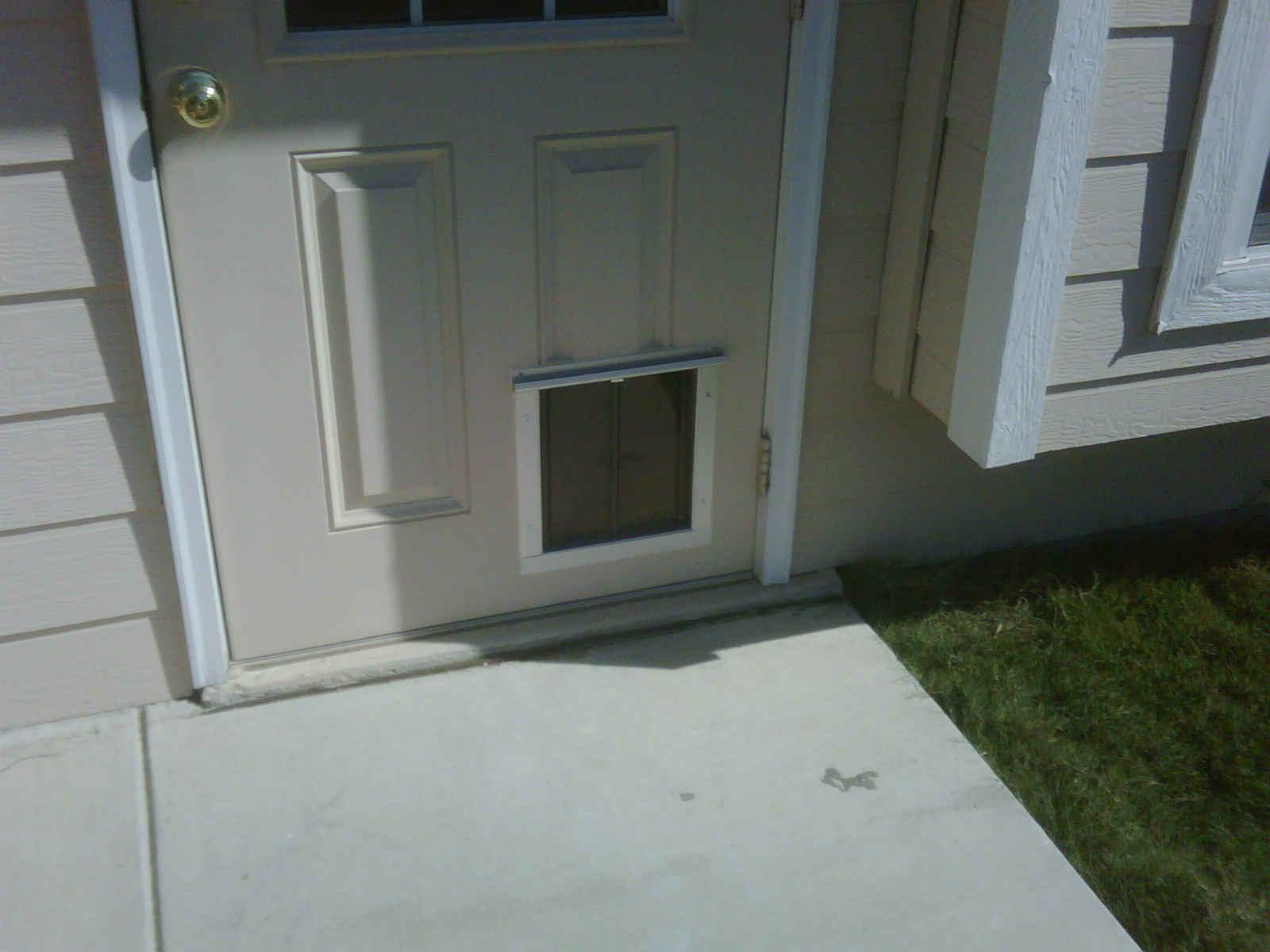 San Antonio Dog Door In Standard Doors Installation Gallery