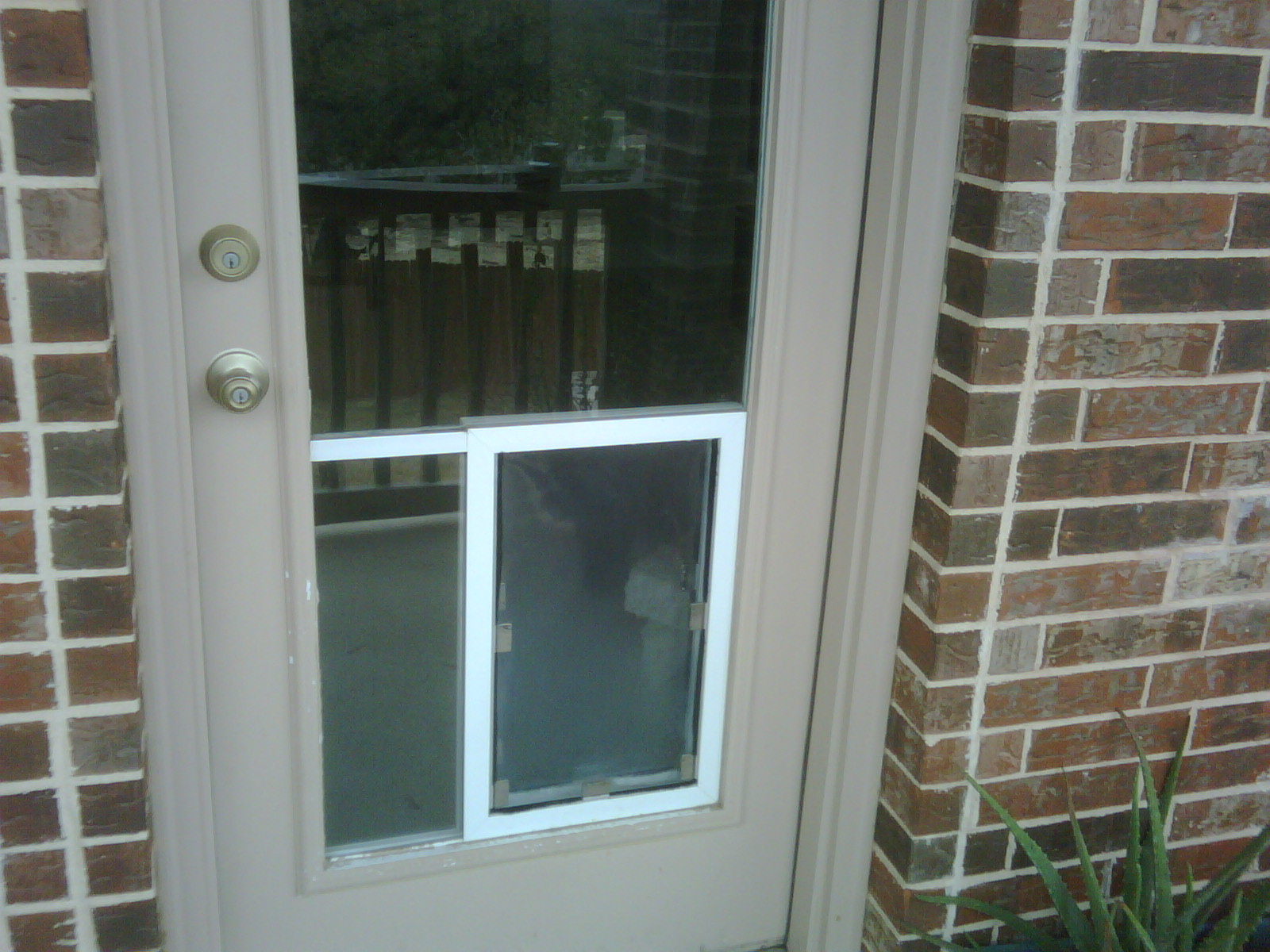 San antonio dog doors in glass installation gallery - Interior door with pet door installed ...