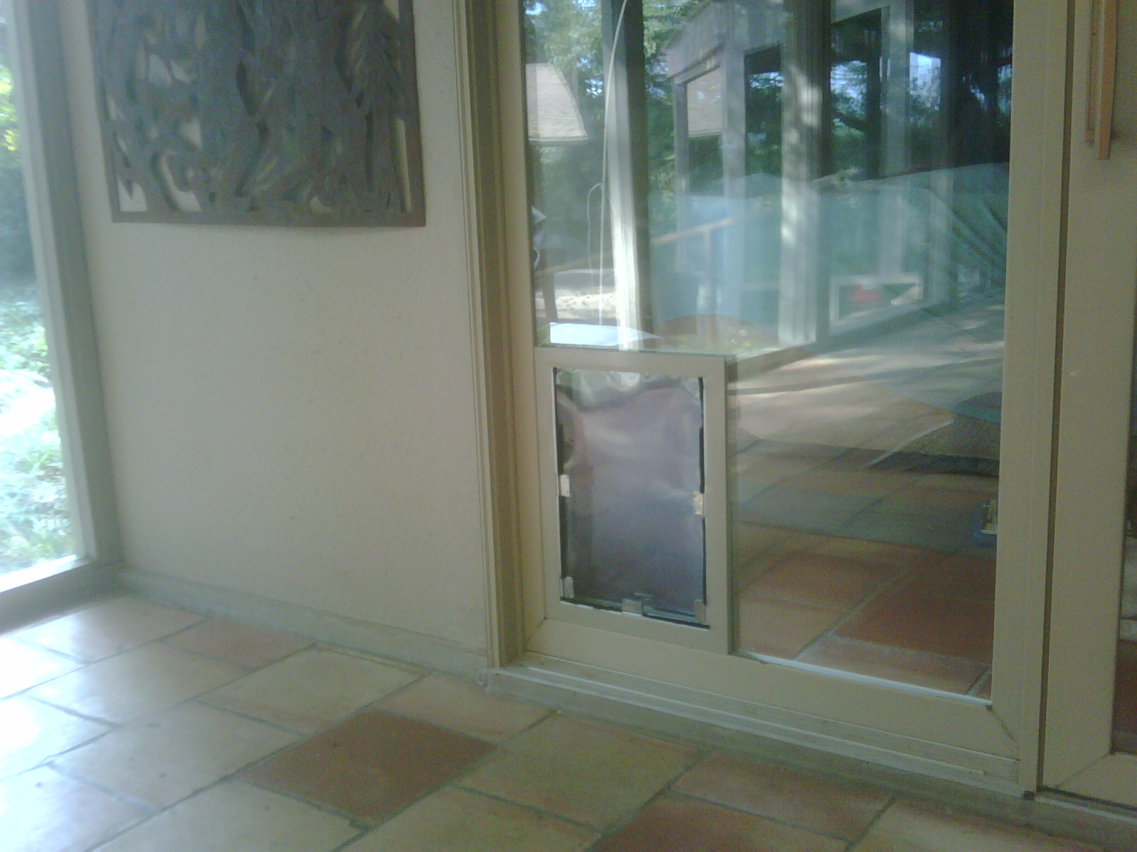 San Antonio Dog Doors In Glass Installation Gallery