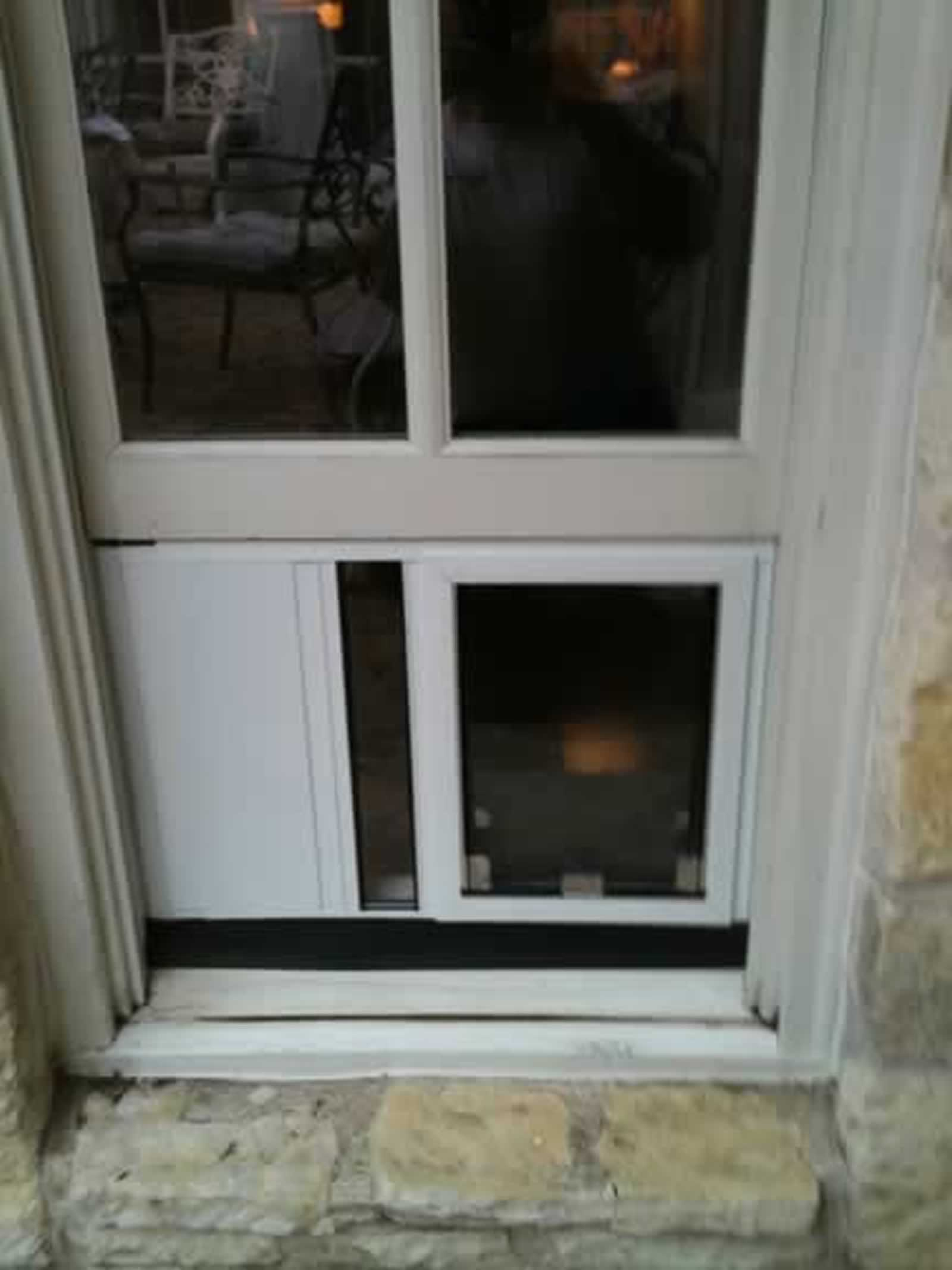 San Antonio Dog Doors In Windows Installation Gallery